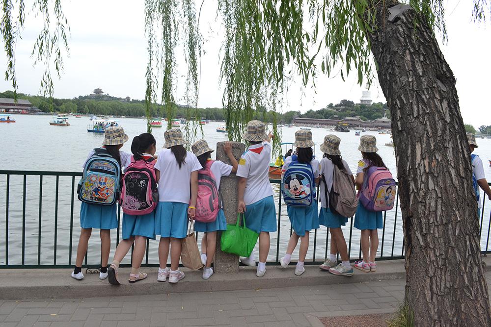 自然生态保护与北京文化探索,需要你陪孩子们一起迎接挑战!